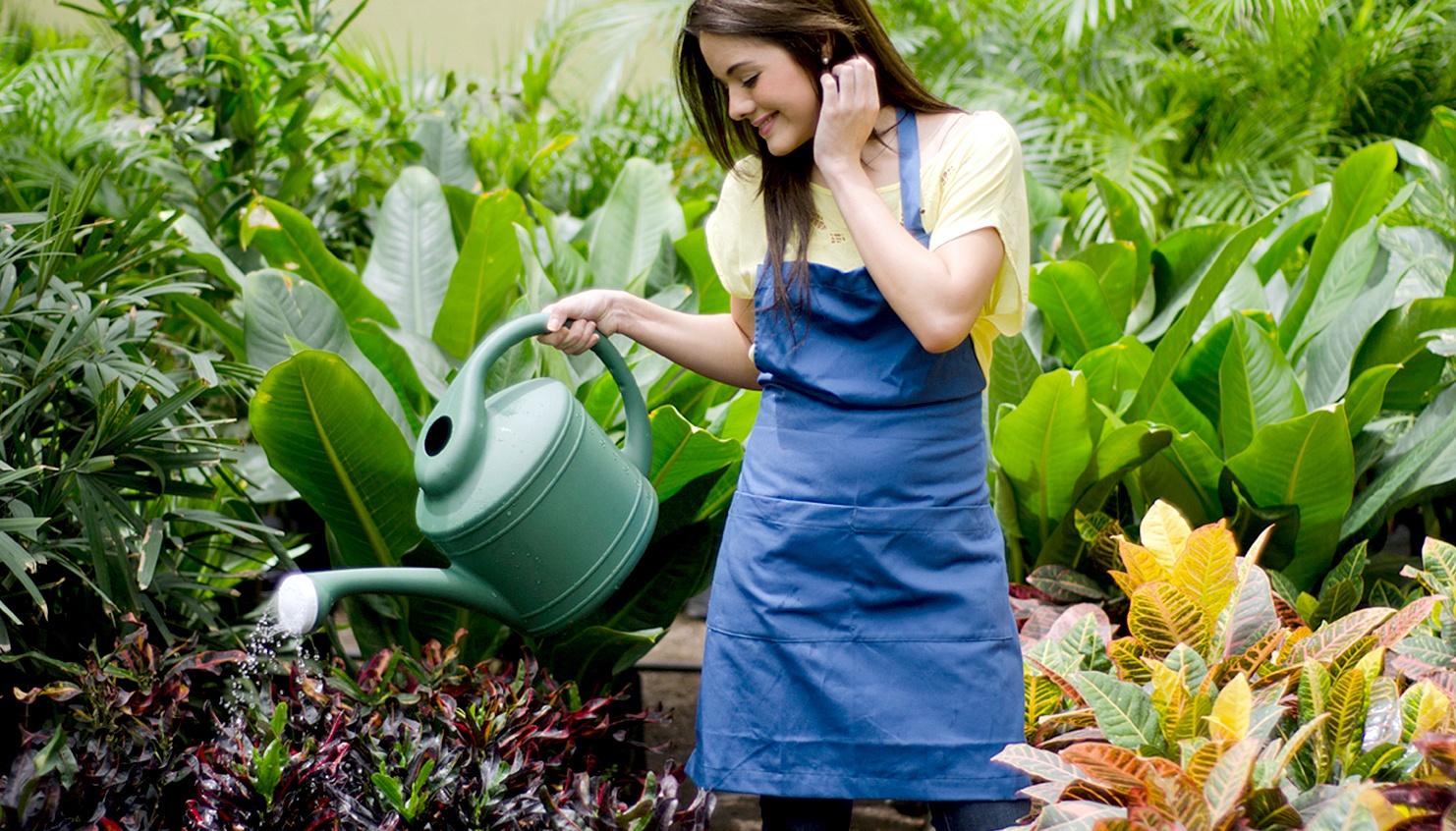 Estilo de vida sustentable consejos para tener un jard n Como tener un lindo jardin